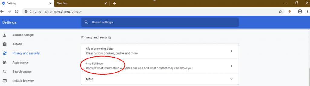 JavaScript on Google Chrome 4